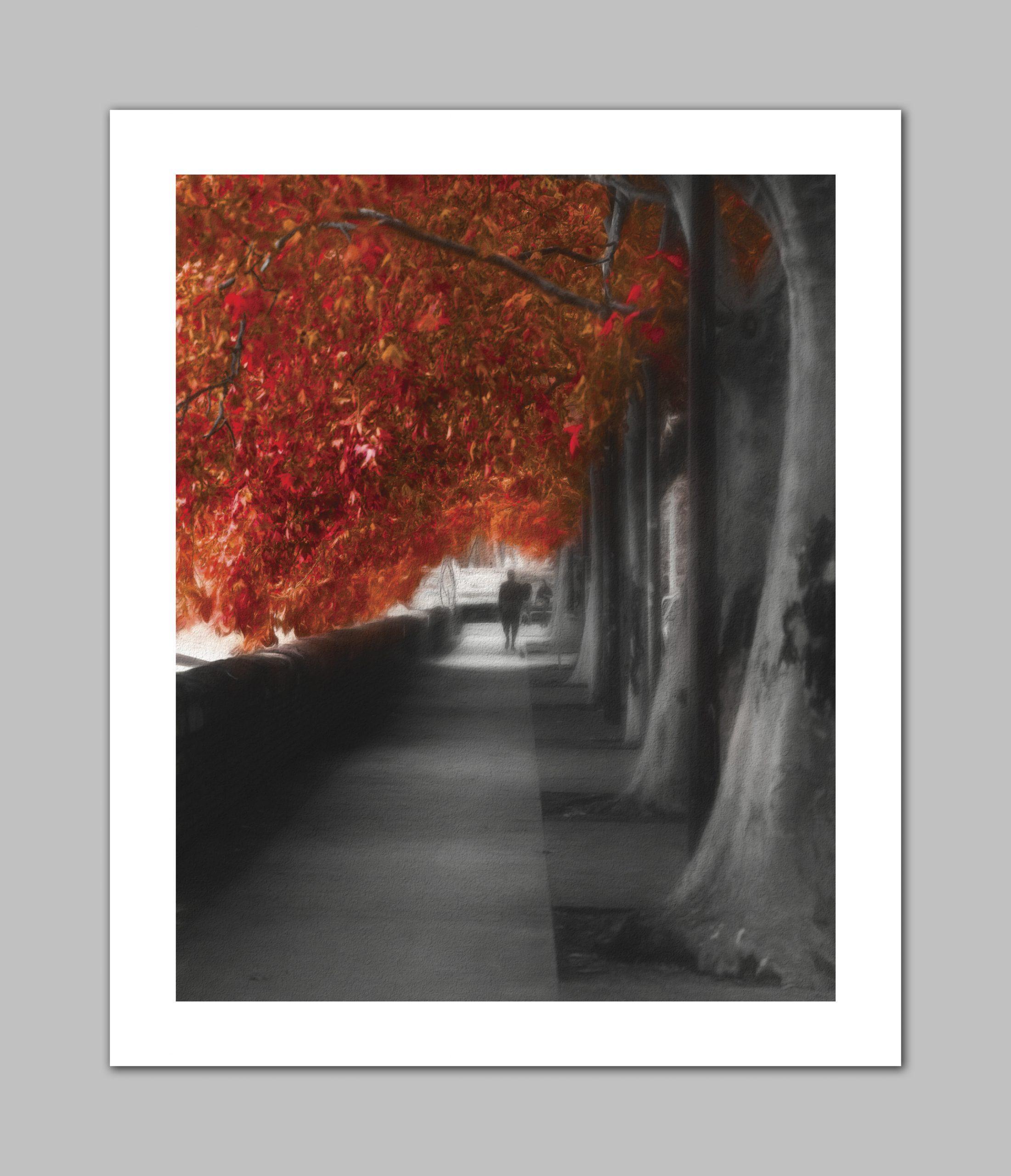 Autumn Promenade - Erik Brede
