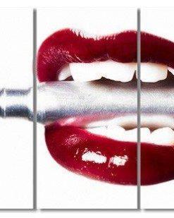 Erik Brede Photography - Bullet Lips Multi Triptych
